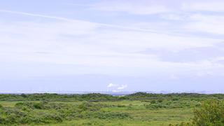 Gezicht over de Kwaden Hoek op de Maasvlakte