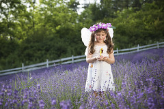 Looking for butterflies (Catalin_Pop) Tags: summer white nature girl june angel butterfly happy child princess outdoor joy lavender romania innocence mauve fetita catalinpopro