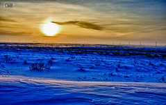 Desolation Sunset (theirishmexican) Tags: winter sunset sun snow cold color nature landscape countryside different desert flat surreal civilization caspian planetary desolate kazakhstan hdr 2012 agip samal karabatan eskenewest