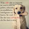 Para refletir.... A vida esta ai ...é só observar !! (soniapatch) Tags: dog cães amorincondicional animaisétudodebom