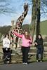 Teenage torchbearer takes Olympic Flame into Safari Park.