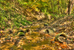 Ancient Containers in a Stream (Joey Ostrander) Tags: old autumn trees light shadow summer orange plants brown green abandoned water grass leaves yellow rock stone creek forest river flow spring saturated sand ancient woods stream treasure mud jar vase washed canopy artifact hdr relic