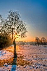 Patches of grass (James Waghorn) Tags: winter snow tree sunrise nikon ultrawide hdr sigma1020 d5000 bestofblinkwinners blinksuperstars
