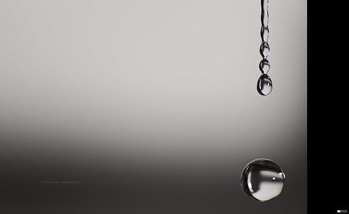 Tears in Heaven [Explore 2012-02-13, Frontpage] (Daniel Wildi Photography) water loss death sadness switzerland heaven tears sad mourning explore tap frontpage 2012 rubigen tearsinheaven doplets cantonofbern lisajennifer danielwildiphotography