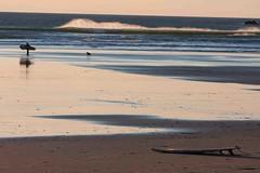 ORSURF2012-1921 (Northwest River Guides) Tags: surf shortsands