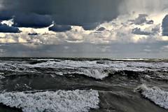 untamable. (MartaRipa) Tags: sea italy landscape italia mare marche adriatico costaadriatica mareadriatico