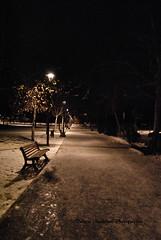 _DSC7630 (daigoromazzoleni) Tags: parco roma neve notte parcodinotte