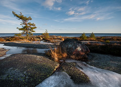 Fiskvik - The rock and the pine (- David Olsson -) Tags: lake tree ice nature grass rock pine clouds landscape nikon sweden sigma bluesky boulder cliffs february 1020mm 1020 vänern 2012 earlyspring hammarö värmland d5000 fiskvik davidolsson räggårdsviken 2exposuremanualblend ginordicfeb12