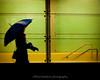 rainy night (bluechameleon) Tags: city urban woman blur color colour window rain silhouette vancouver umbrella trainstation bluechameleon artlibre sharonwish bluechameleonphotography