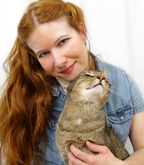 Tara and Merlin (taraflyphotos) Tags: portrait pet love animal shirt female grey feline artist affection longhair kitty denim whitebackdrop redhair tabbycat catlover catartist tarafly