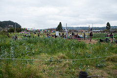 Occupy the Farm at UC Berkeley's Gil Tract in Albany-0571 (Steve Rhodes) Tags: city urban farm protest cal albany agriculture oo ucberkeley urbanfarm urbanfarming ows osf universityofcaliforniaberkeley occupy urbanfarms occupywallstreet occupyalbany occupycal occupyfarm occupythefarm giltract takebackthetract