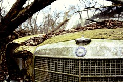 Mercedes-Benz (Ho-Dad) Tags: old broken car junk rust rusty forgotten mercedesbenz rusting 1970s