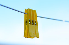 DSC_9204 (houseworld) Tags: clips clothesline tamron90mm