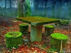 Mesa para cuatro (Alfer520) Tags: espaa musgo verde hojas spain arboles bosque burgos mesas piedras suelo hierba ramas castillayleon merindades ordunte valledemena alfer520