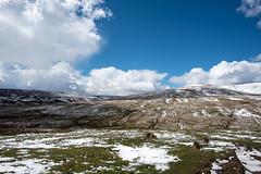 Scotish moors (haywardk49) Tags: uk england people raw nef yorkshire wideangle northumberland d750 jpg fullframe scotish stotland