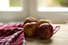 Old Apples (suzanne.gibson) Tags: stilllife macro home apple window kitchen fruit indoor