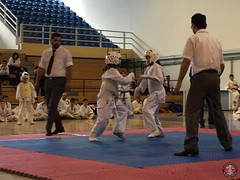 stefanou_15_5_2016_knockdown_208