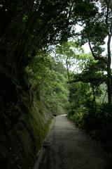 DSC07622 (rickytanghkg) Tags: zeiss landscape hongkong sony a550 za1680 sonya550