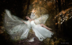 Fallen angel (Soloross) Tags: trees light fall nature girl leaves angel forest fly wings model dress legs fineart surreal story fairy