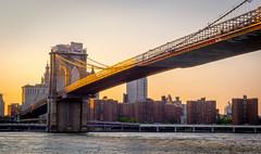 A Golden Brooklyn Bridge, NYC (ravi_pardesi) Tags: nyc newyorkcity bridge sunset usa ny newyork water skyline architecture brooklyn gold golden evening spring waterfront dusk manhattan bridges serene marvel skyscrapper 2016 spring2016
