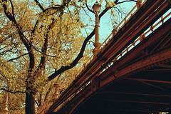 bridge (blaisedeux) Tags: park street bridge tree nature lamp landscape spring nikon under d5200