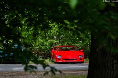 In the woods. (Nino - www.thelittlespotters.fr) Tags: old red paris france cars beautiful sport vintage golf amazing machine ferrari clean 80s luxury rare supercar f40 yvelines