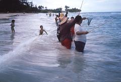 Surf fishing  1965 (D70) Tags: men net children hawaii fishing women surf unitedstates oahu adults rods 1965