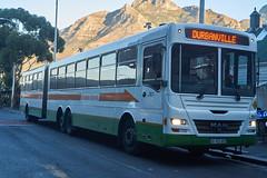 MAN Articulated bus in Cape Town (jayayess1190) Tags: city urban man bus publictransportation capetown vehicle commuter passenger masstransit goldenarrow