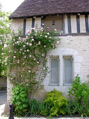 Une maison ancienne avec rosier  Provins (toucanne) Tags: old flowers roses house window rose climbing maison ancienne pierrederonsard