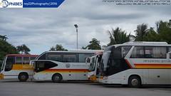 Yellow Bus Line vs. Mindanao Star fleets (rey22 Photography) Tags: buses yellow hino mindanao vti philbes highdecker