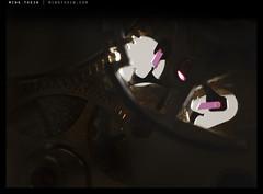 _M9P1_L1012012 copy (mingthein) Tags: leica macro closeup zeiss t la movement nikon mechanical bokeh flash watch carl micro wristwatch tradition ming speedlight bellows viso 250 planar m9 montre visoflex 502 horology breguet zm onn strobist thein sb900 photohorologer sb700 mingtheincom m9p blogmingtheincom