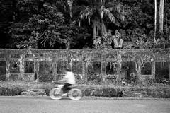 """Cyclist"" - Golfito, Costa Rica (Doug van Kampen) Tags: road city travel urban man hot building latinamerica bicycle port bay town costarica ride little decay banana worn tropical shipping americas centralamerica humid littlebay golfito transportration"