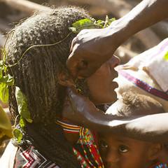 Piercing with accacia spine for Gada ceremony in Karrayyu tribe - Ethiopia (Eric Lafforgue) Tags: culture tribal tribes tradition tribe ethnic gadda tribo ethnology tribu thiopien etiopia gada ethiopie etiopa oromia oromo 6412  etiopija borana ethnie ethiopi  etiopien etipia  eti
