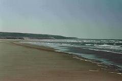 Endless Sandy Beach (Bryan    Doty) Tags: santa clara blue sea camp arizona beach sonora de mexico sand jellyfish crab el scorpion tecate corona cortez mx pacifico campsite golfo sort3 bryandoty