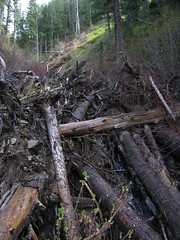 Avalanche Debris (JUDGE DREDD76) Tags: usa mountains utah debris saltlakecity millcreekcanyon avalanche porterfork