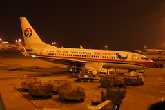 China Eastern Yunnan B-5255 (rickihuang) Tags: china night plane airplane airport branch aviation capital beijing ground international civil airbus  boeing  ces yunnan airlines mu eastern   airliner 737  pek    zbaa           b5255 79pwl
