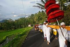 Hindu Procession (Leonid Plotkin) Tags: bali indonesia religious temple asia traditional religion ceremony celebration ritual procession tradition hindu hinduism rite batukaru