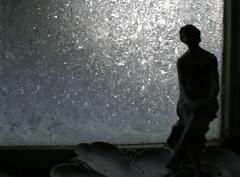 (ManonMK) Tags: winter ice netherlands groningen frostwork sonydslra100 manonmk