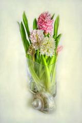 Jacintos y caracola (Clickor) Tags: stilllife textures hyacinthus jacintos supershot artistictreasurechest magicunicornverybest magicunicornmasterpiece