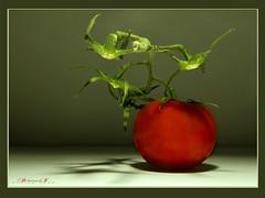 (aniribe) Tags: vegetables tomato nikon creative wow1 yabbadabbadoo