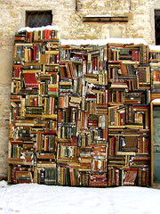 Books in the snow......16 febbraio 2012 (cepatri55) Tags: snow book libro books libri neve 2012