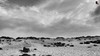 trade winds (susodediego ) Tags: bw bn canaryisland lagraciosa tradewinds wow1 archipiélagochinijo alisios borderfx playalasconchas leicadlux4 mygearandme ringexcellence flickrstruereflection1