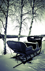 Sleigh in the Snow with Birch Trees (Voimäki) Tags: winter blackandwhite snow monochrome finland moody lapland crossprocessing birchtrees ivalo hotelivalo riverivalo