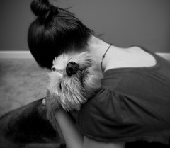 Day 164- Sweetie (amandanpowell) Tags: blackandwhite dog pet selfportrait hug sweet 365