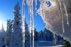 Icicles (timo_w2s) Tags: blue winter sky snow ice sunshine finland sparkle lapland icicle kuusamo ruka