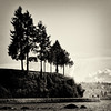 Still standing after all this time (. Jianwei .) Tags: life park sea sky cloud tree scale water vancouver composition standing john square still rocks candid ubc size stanley stanleypark 365 elton jianwei kemily