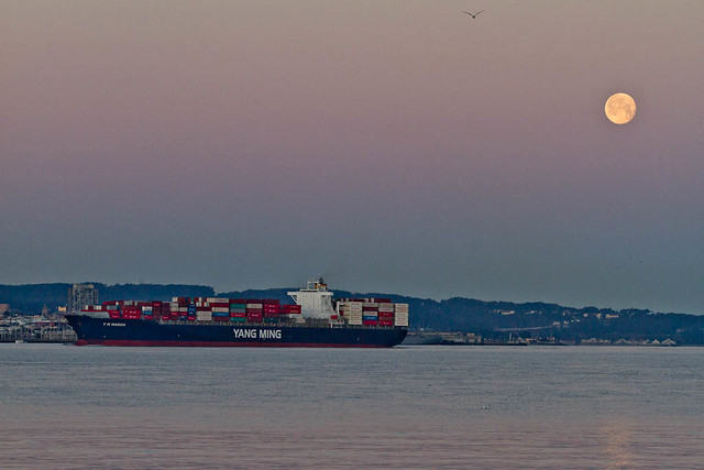 san-francisco-ca-treasure-island-2012-03-09-moon-set-ship-container-yang-ming-h-2