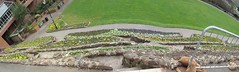 Grounds of Tamworth Castle - early Spring flowers down the walled bank - panoramic (ell brown) Tags: greatbritain flowers england flower spring unitedkingdom panoramic staffordshire tamworth tamworthcastle riveranker thecastlegrounds ankersideshoppingcentre castlepleasuregrounds