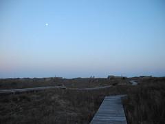 IMG_0576 (justinvandyke) Tags: beach dunes northcarolina boardwalk seagrass holdenbeach
