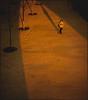 young lovers (Daniel Hernanz Ramos) Tags: madrid nightpictures urbanpictures streetpictures artisticpictures danihernanz parquesdemadrid animalspictures moodpictures danielhernanzfotografodemadrid animalsphoto mountainspictures ambientpictures lasmejoresfotosdemadrid artisticanimalpictures madridriofotos copyrightdanihernanz fotosartísticasdemadrid fotosdemadridenblancoynegro blackandwhiteurbanpictures amazingurbanpictures fotografodeanimalsdanihernanz amazinganimalpictures agressiveanimalpictures animaldetailpictures animalsfacetoface closeupanimalpictures thebestpicturesofanimals beautifullandscapespictures ambiancepictures pictureswithatmosphere artisticstreetpictures artisticurbanpictures artisticstreetcomposition cityambientpictures fotosriomanzanares fotospuentedetoledo
